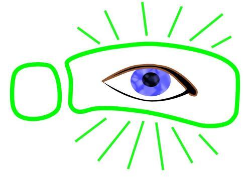 walktoendblindnesslogo